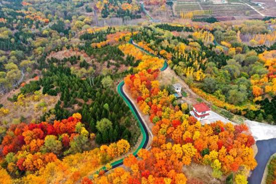 北京房山青龙湖持续优化生态环境 为转型发展提供和谐共生发展理念
