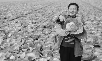 """合作社理事长们的""""三秋"""" ——河北省种植合作社结构调整观察"""