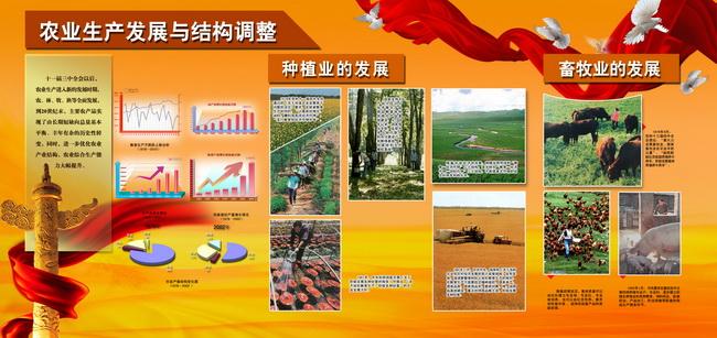 农业生产发展与结构调整