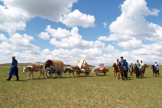 内蒙古阿鲁科尔沁草原游牧系统位于大兴安岭西南余脉,是科尔沁草原和锡林郭勒草原的交接带,是一片历史悠久的天然牧场。核心区位于阿鲁科尔沁旗巴彦温都尔苏木,面积4 141平方公里,自古以来就是游牧民族狩猎和游牧活动的栖息地。蒙古族牧民熟知当地山川河流、草场分布和季节变化,根据雨水丰歉和草场长势决定一年四季的游牧线路,以及春、夏、秋、冬四季牧场的放牧时间。牧民牲畜草原(河流)之间形成了天然的依存关系。这种三角关系延续至今,不断孕育和发展着蒙古族人民所独有的生产方式、生活习俗、文化特质和宗教信仰,时刻体现