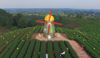 第四批中国重要农业文化遗产名单:四川名山蒙顶山茶文化系统