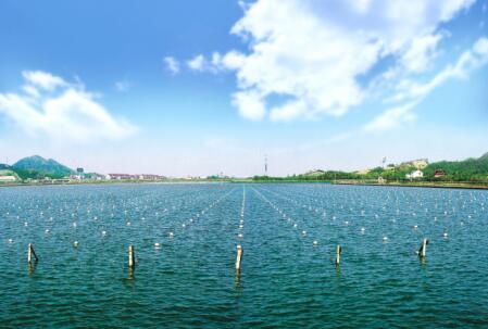 第四批中国重要农业文化遗产名单:浙江德清淡水珍珠传统养殖与利用系统