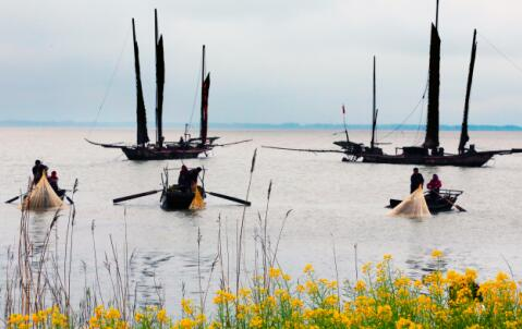 第四批中国重要农业文化遗产名单:江苏高邮湖泊湿地农业系统
